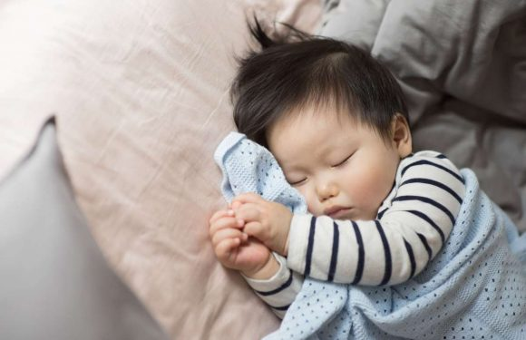 유아대백과  생후 4~6개월